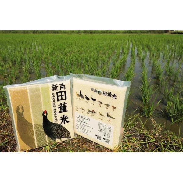 台南11號三斤裝家庭包