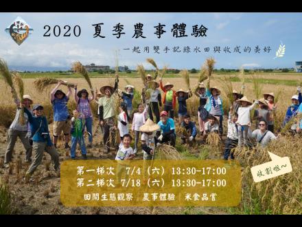 2020田董米收割體驗