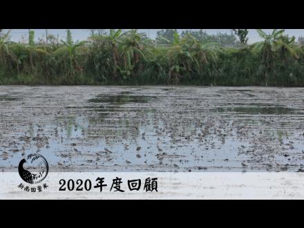 田董米2020年回顧